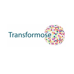 Transformose Eindhoven Internet Marketing
